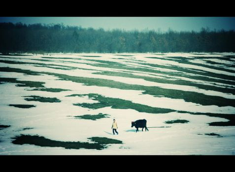 Snow ribbons and ground cinders by iNeedChemicalX