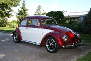 1955 VW by tonysphotos