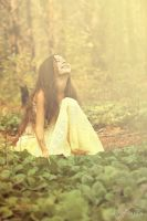 In Fairy Forest 2 by silverwing-sparrow