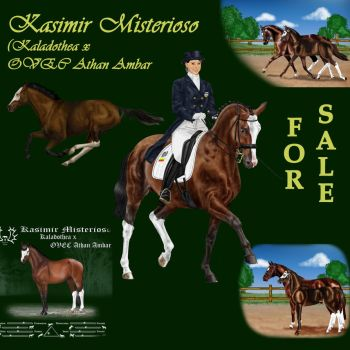 SOLD RESULTS ARE HERE - Kasimir Misterioso by alvija