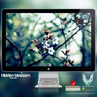 .HIDDEN BLOSSOM. Wallpaper by enemia