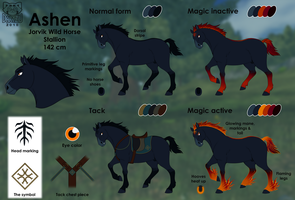 Ashen Ref Sheet by Dartzu