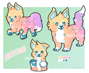 OPEN Canine Adopt (Auction) by MatchiiTea