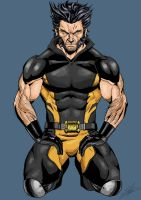 Wolverine (Comic Style) by Afromane