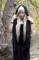 Forest I by tanit-isis-stock