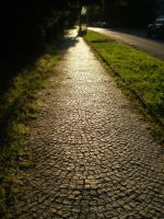 The road. by Luczynka