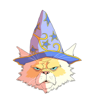 Wizard Cat by repoghost