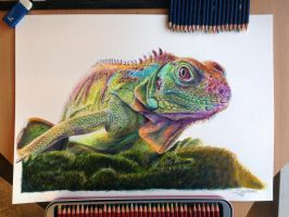 Iguana Mixed media drawing by AtomiccircuS