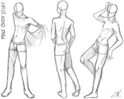 Male body study - Take two by SoraCooper
