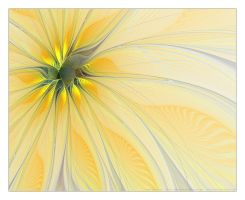 Abstract Sunflower by faded-ink