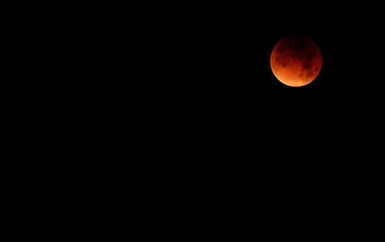 Wallpaper - Blood Moon by ad-referendum