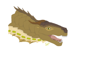 Caiman by Shallowpond