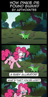 Comic: How Pinkie Pie Found Gummy by artwork-tee