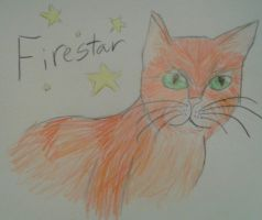 Firestar from Warrior cats by Winter-Sky529