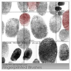 Fingerprinted Brushes by Scully7491