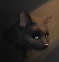 Hollyleaf by GrayPillow