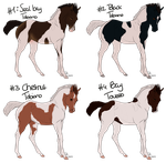 Foal adopts - PRICES LOWERED by Lemonegrass