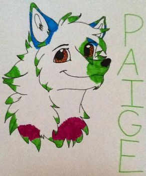 Paige by mm101199