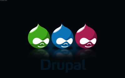 Drupal Wallpapers R4, Dakku by njt1982