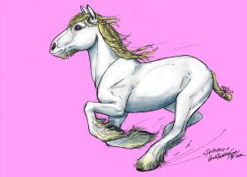 Schleich Shire Mare Princess by CarolaFunder