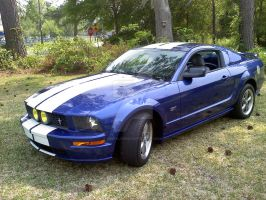 2005 Mustang GT by savfalcon21