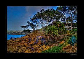 La Jolla Landscape by dx