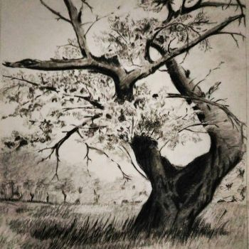charcoal drawing by Emilthomas