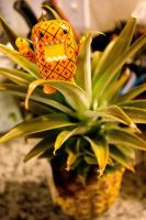 Sweet Pineapple! by PiliBilli