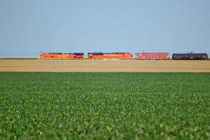 field of trains by JDAWG9806