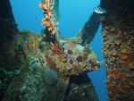 Wreck Propellor by Meagharan