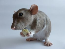Eating Dumbo Rat Sculpture by philosophyfox