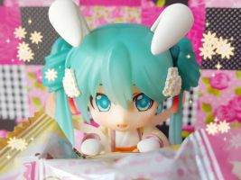 Mofy Candy + Bunny Miku and Gakupo Photo Series 16 by ng9