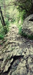 Uneven Stone Path by Rayquazasaremysterys