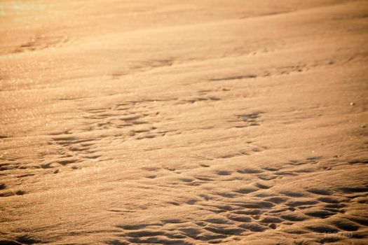 Snow or Sand by CharlyBr