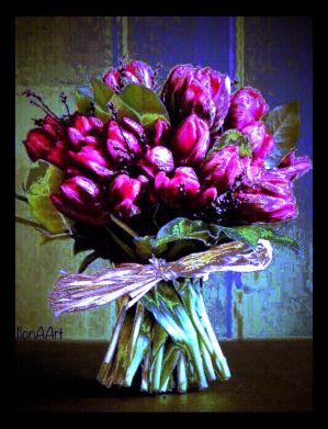 TULIPS FROM THE NETHERLANDS by IME54-ART
