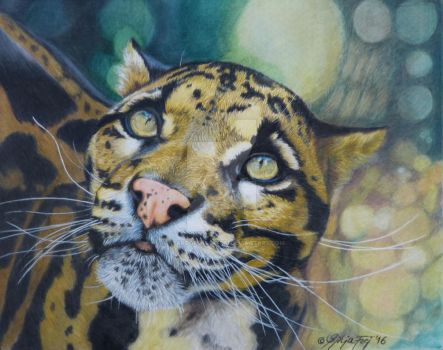 Couded Leopard in Colored Pencils by theArtofsilviafrei