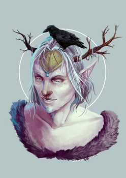 Frost by the-searching-one