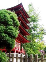 Japanese Tea Garden: pagoda by QmagicalQpineappleQ