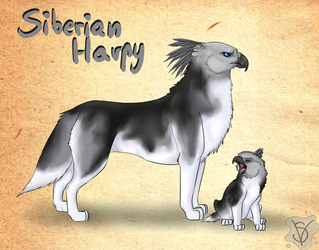 Siberian Harpy - OC sheet by SenterVeris