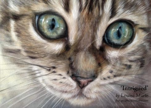 'Intrigued' by LouiseMarieFineArt
