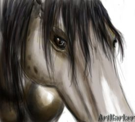 Quick Horse Sketch by ArtBarker