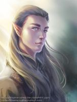 Thranduil _ In the Wind by pastellZHQ