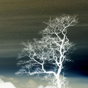 Abstract Winter Tree by RobynSmile