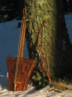 Two stringed spike fiddle by taika-kim