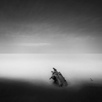 lonely one by AlexGrifo