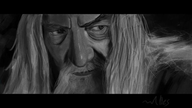 one hour speedpaint The Grey by LorDeimos