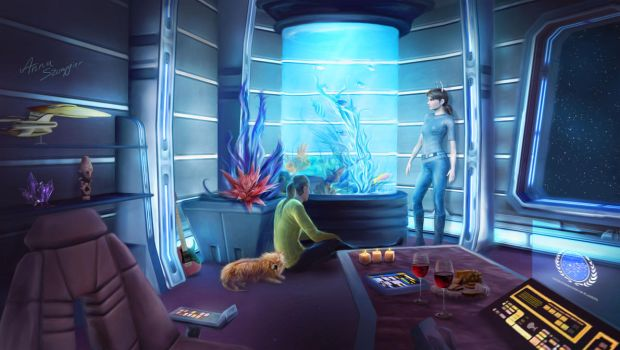 Captain's Quarters by cylonka