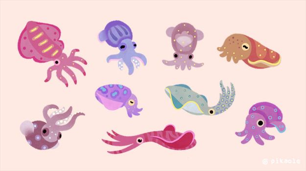 Squids by pikaole