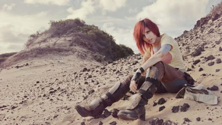 Borderlands by beethy