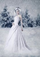 Winter by mevica